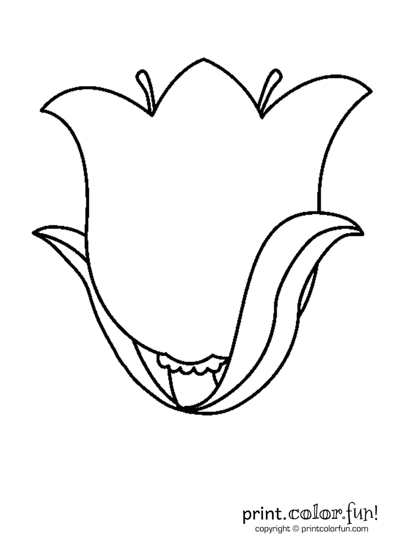 coloring tulip template 8 flower vase template for kids sampletemplatess coloring tulip template