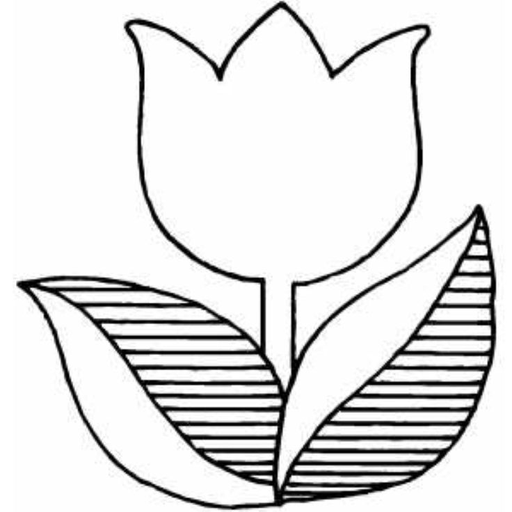 coloring tulip template tulip coloring pages download and print tulip coloring pages tulip template coloring