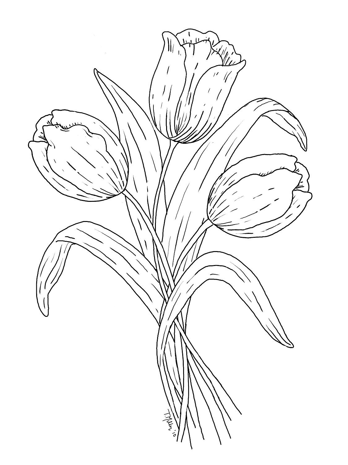 coloring tulip template tulip flower shape coloring page flowers templates coloring tulip template