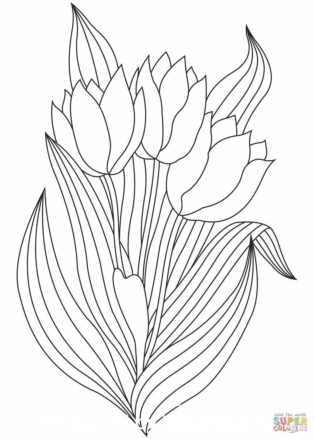 coloring tulip template tulip template for kids coloring page coloring template tulip