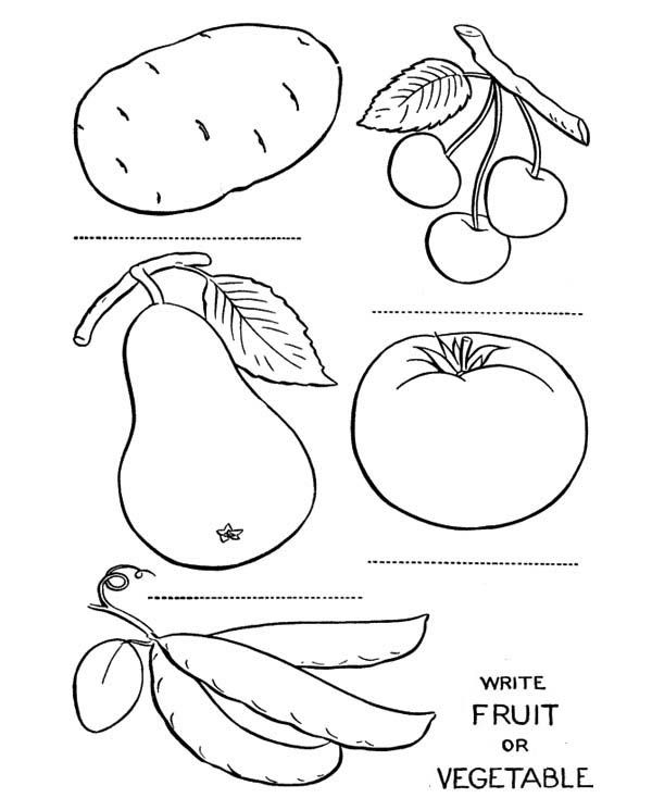 coloring vegetables and fruits coloring pages coloring fruits and vegetables vegetables and coloring fruits