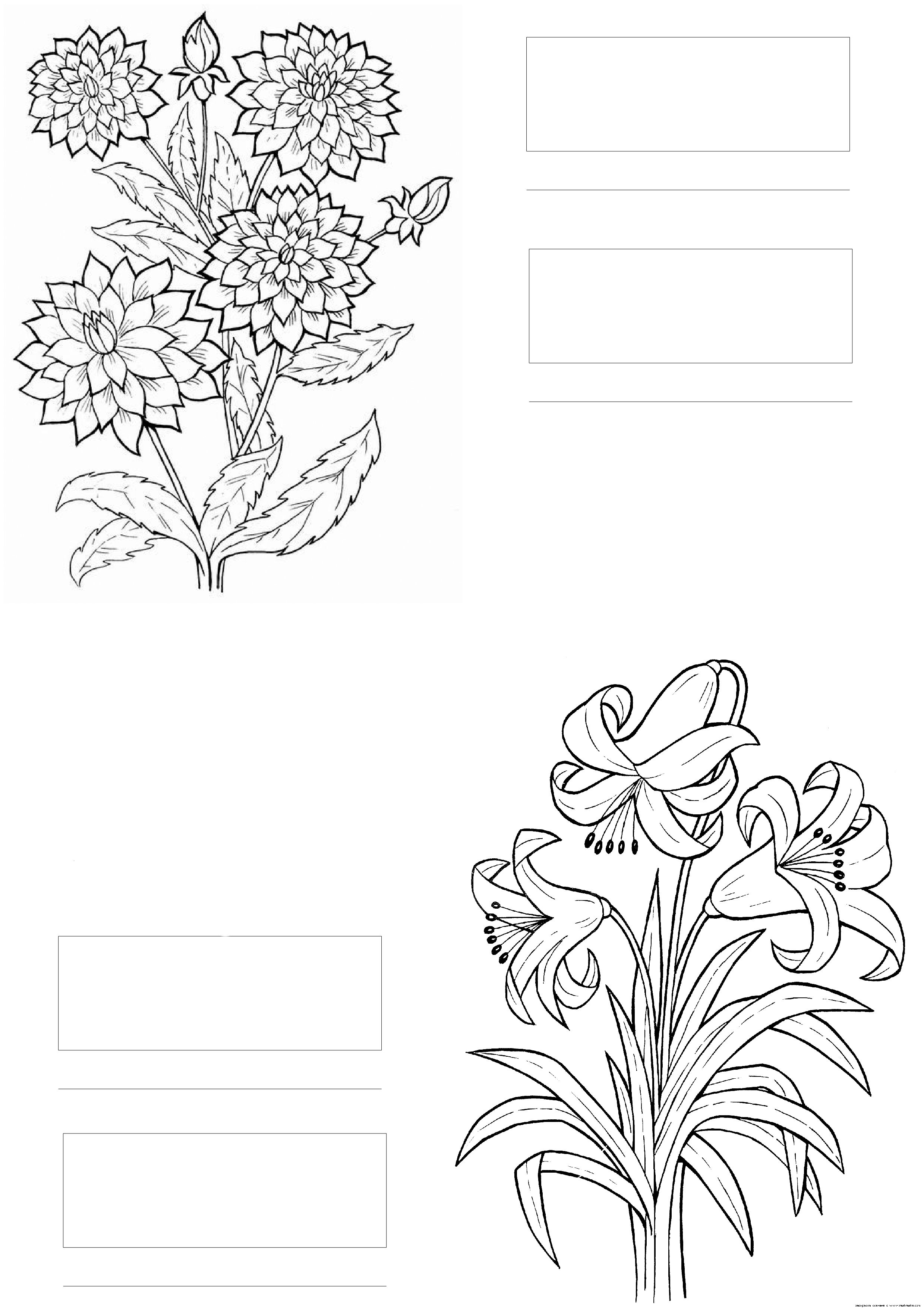 coloring with colored pencils and markers coloring flowers with copics unique 376 best pattern markers with colored pencils coloring and