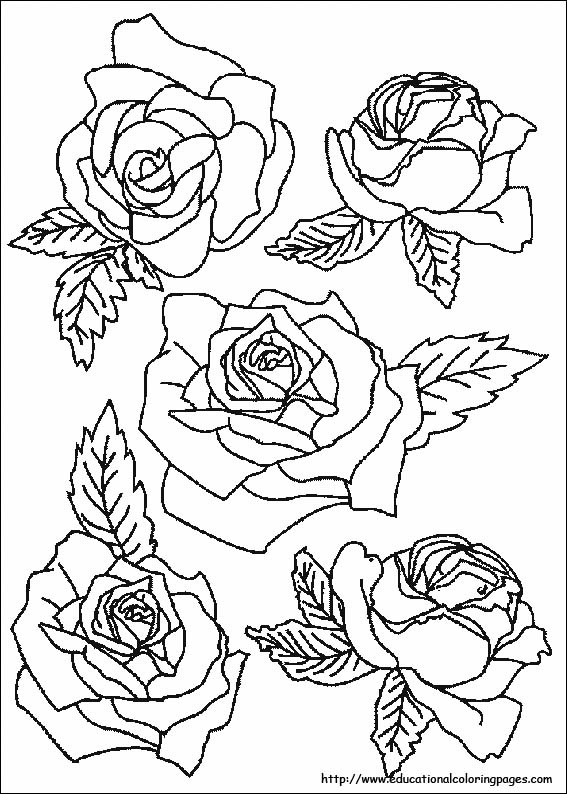 coloring worksheets about nature printable nature coloring pages for kids cool2bkids nature worksheets about coloring