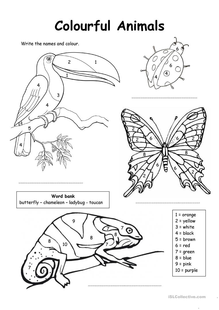 coloring worksheets english coloring pages english esl worksheets for distance english worksheets coloring