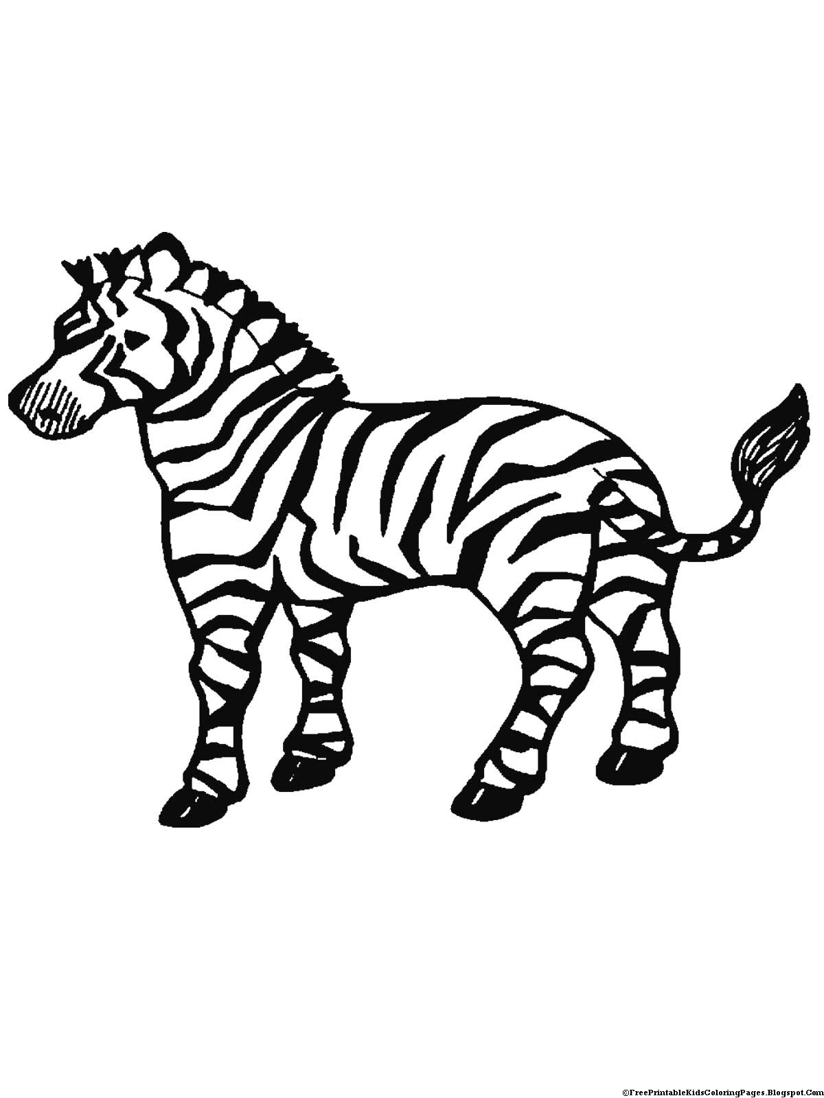 coloring zebra pictures zebra coloring pages for kids photos animal place coloring pictures zebra