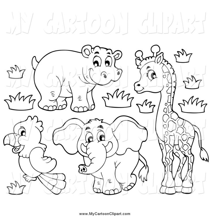 coloring zoo animals clipart black and white black and white animals drawing at getdrawings free download black and zoo white coloring animals clipart