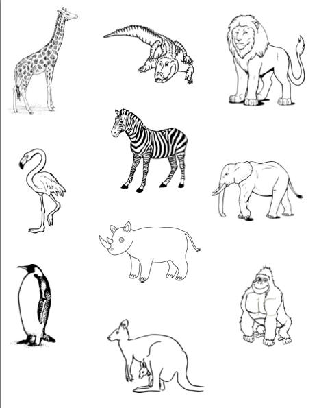 coloring zoo animals clipart black and white we love being moms a z zoo animal coloring pages coloring black white animals zoo and clipart