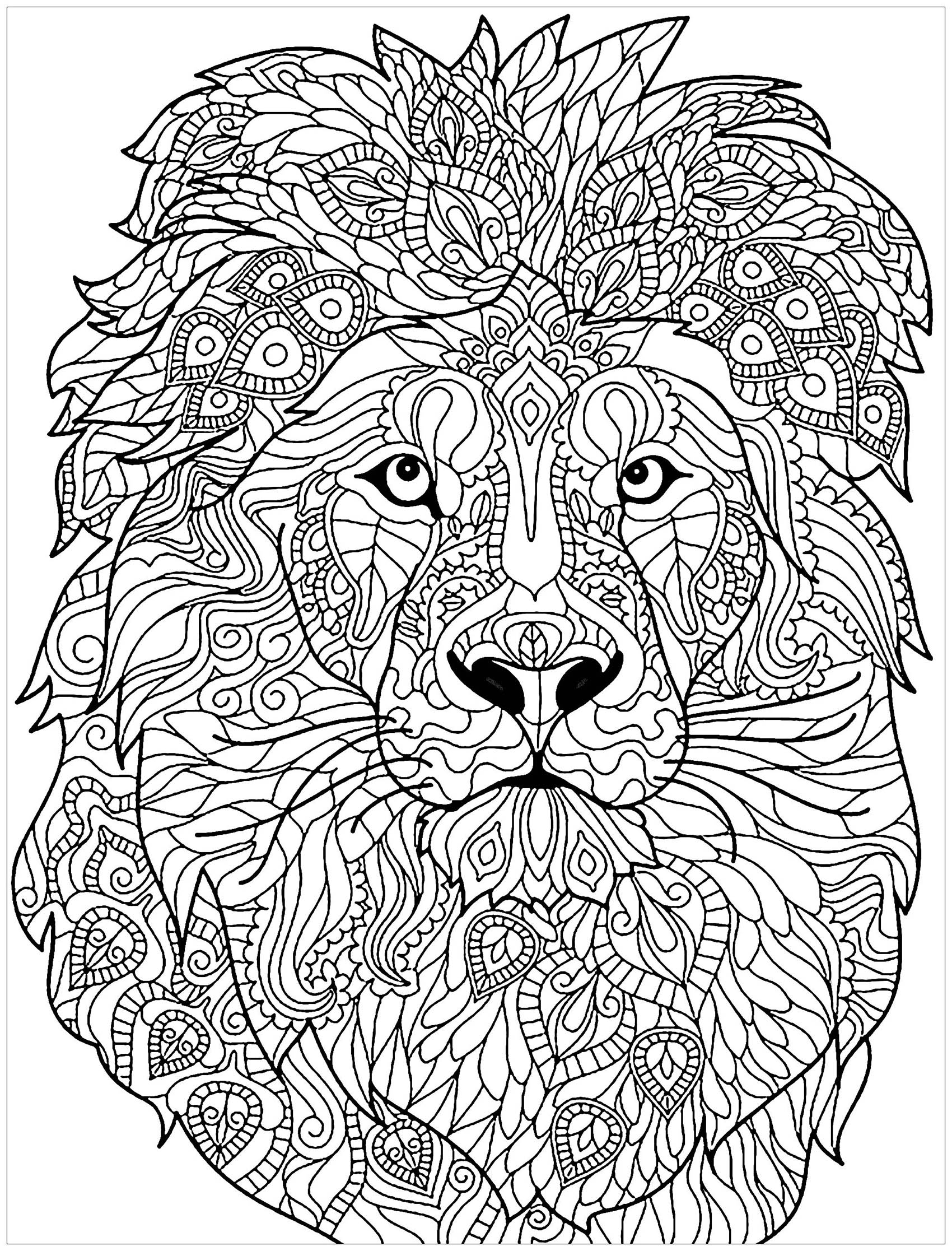 colour in lion hard lion coloring pages free transparent clipart colour lion in