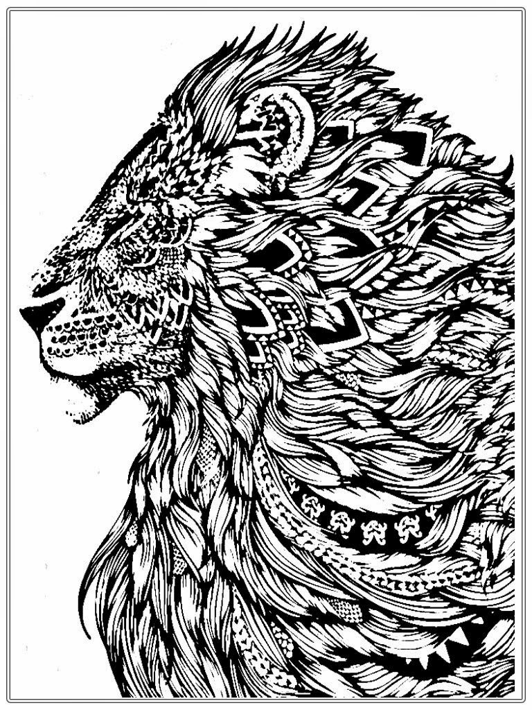 colour in lion library of lion drawing clipart black and white download colour lion in