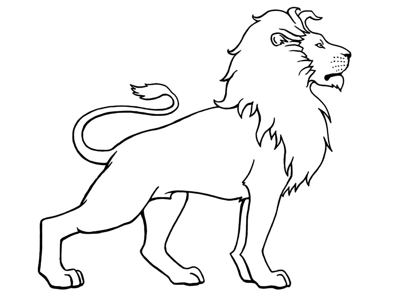 colour in lion lion coloring pages at getcoloringscom free printable in lion colour