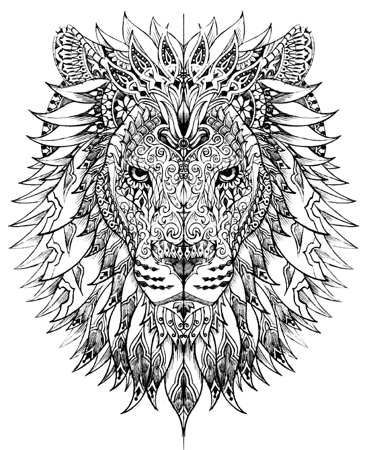 colour in lion lion head lions adult coloring pages in colour lion