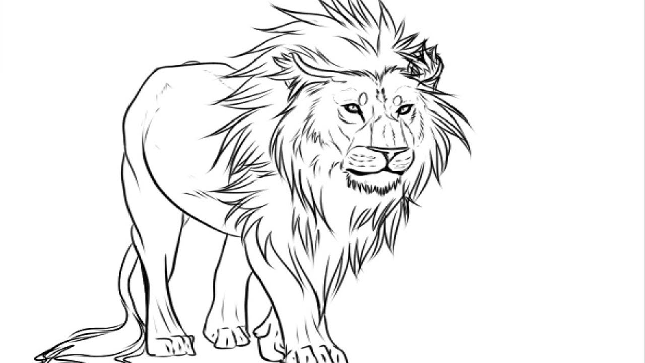 colouring images of lion coloring pages easy kids drawing lion drawing pictures lion colouring images of