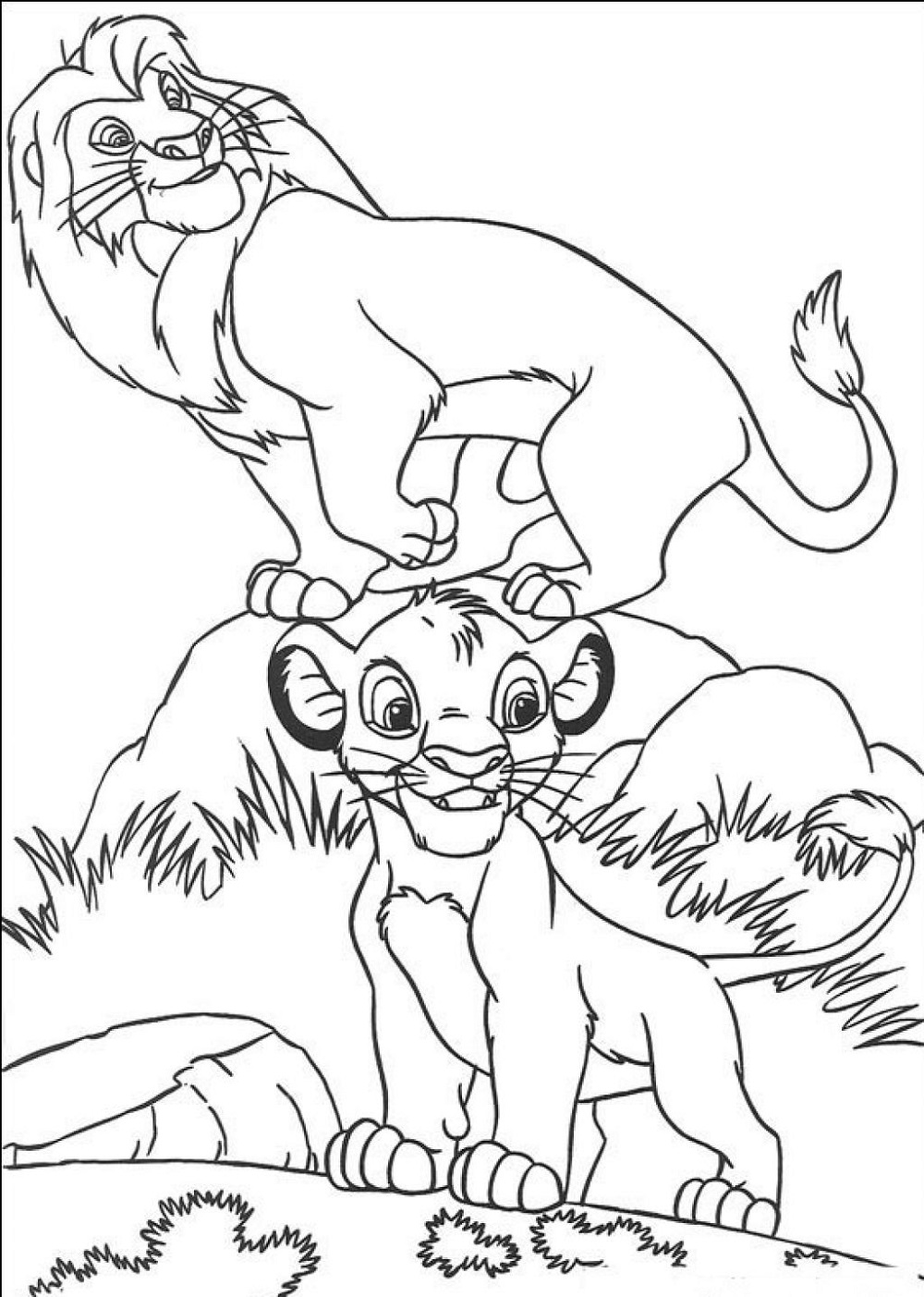 colouring images of lion coloring pictures of animals lion free images lion of colouring