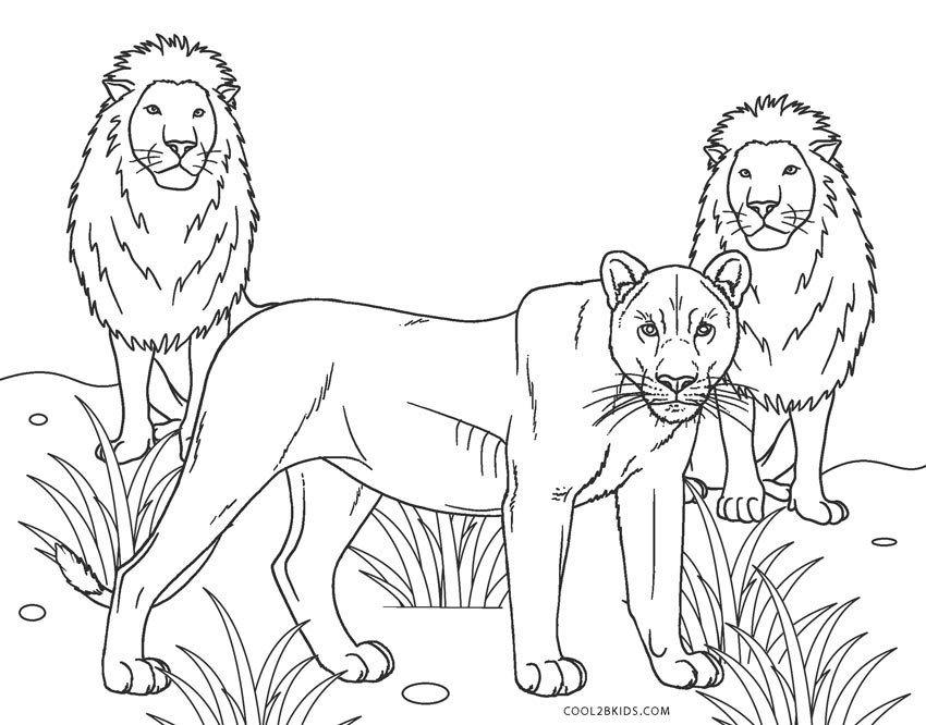 colouring images of lion free printable lion coloring pages for kids images colouring of lion