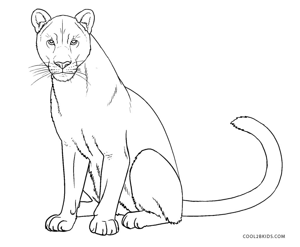 colouring images of lion free printable lion coloring pages for kids of colouring lion images