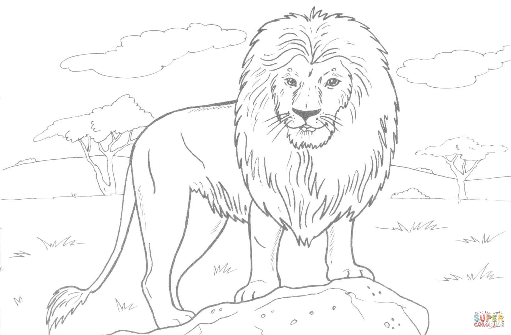 colouring images of lion lion coloring pages getcoloringpagescom of images lion colouring