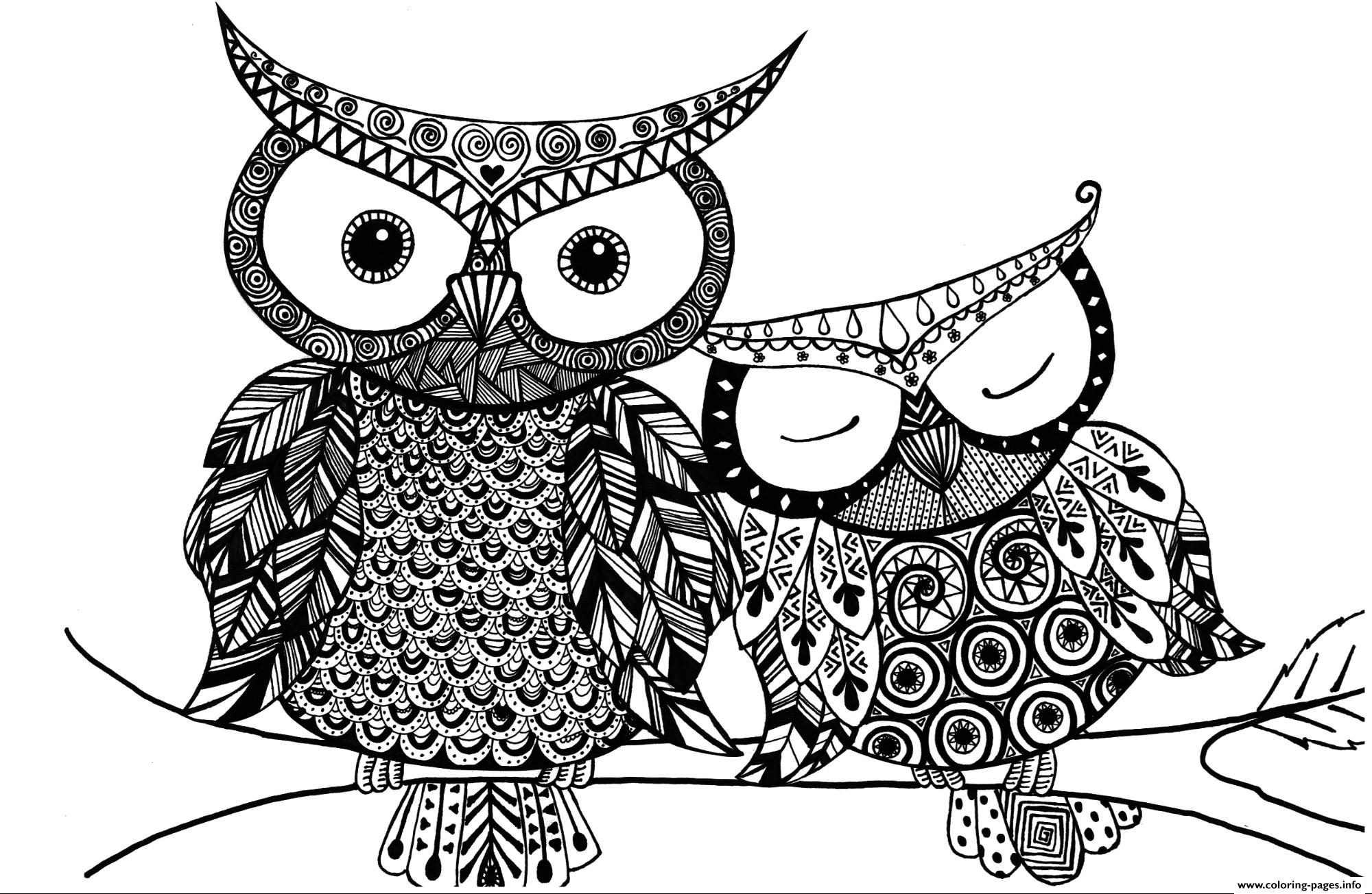colouring owl adult owl coloring pages printable owl colouring