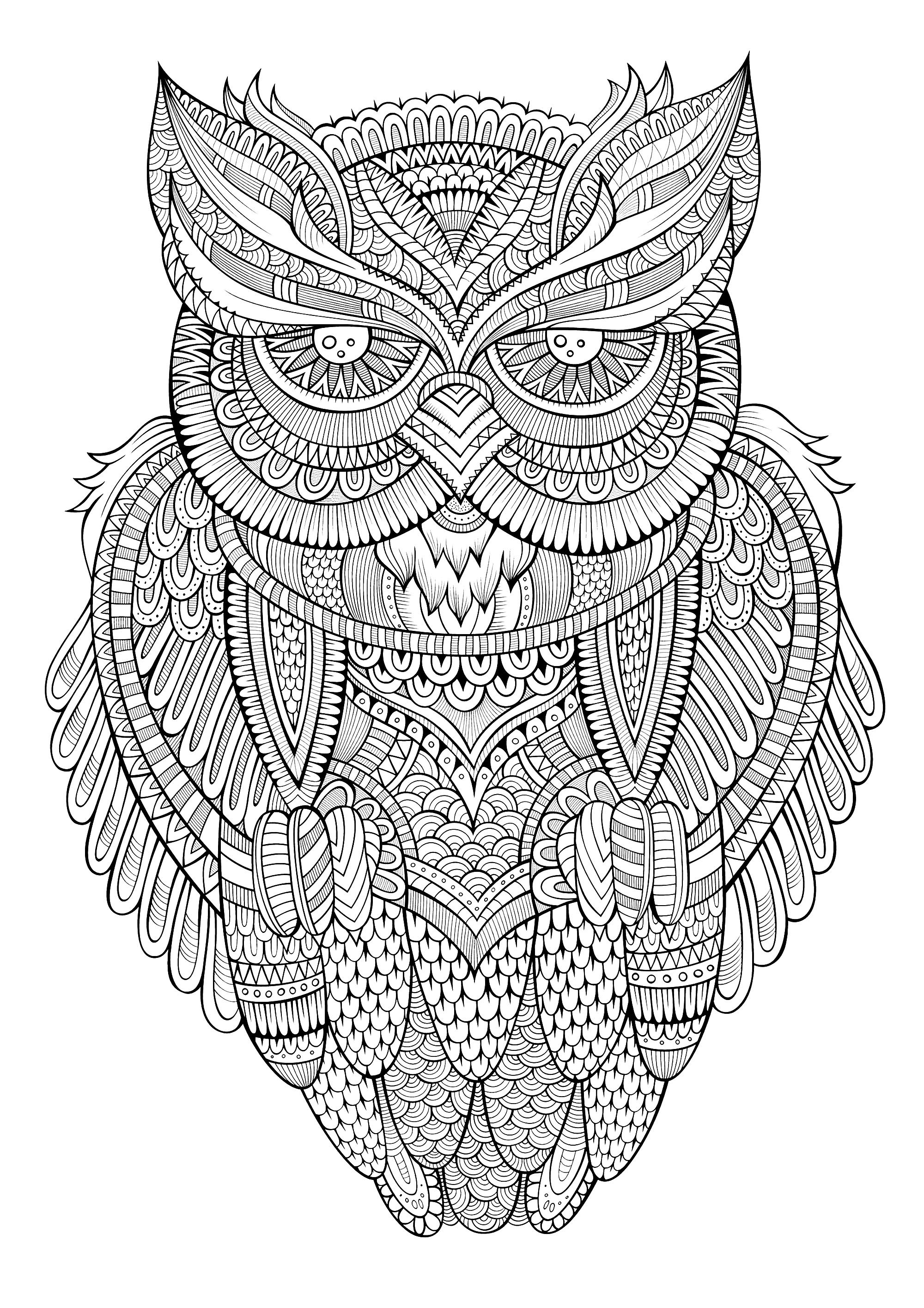 colouring owl peaceful owl owls adult coloring pages colouring owl