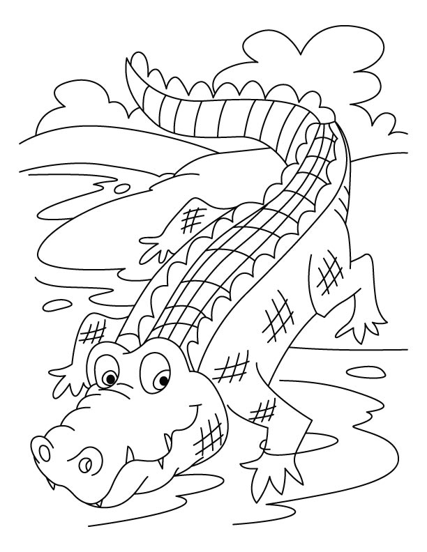 colouring pages crocodile free printable crocodile coloring pages for kids pages colouring crocodile