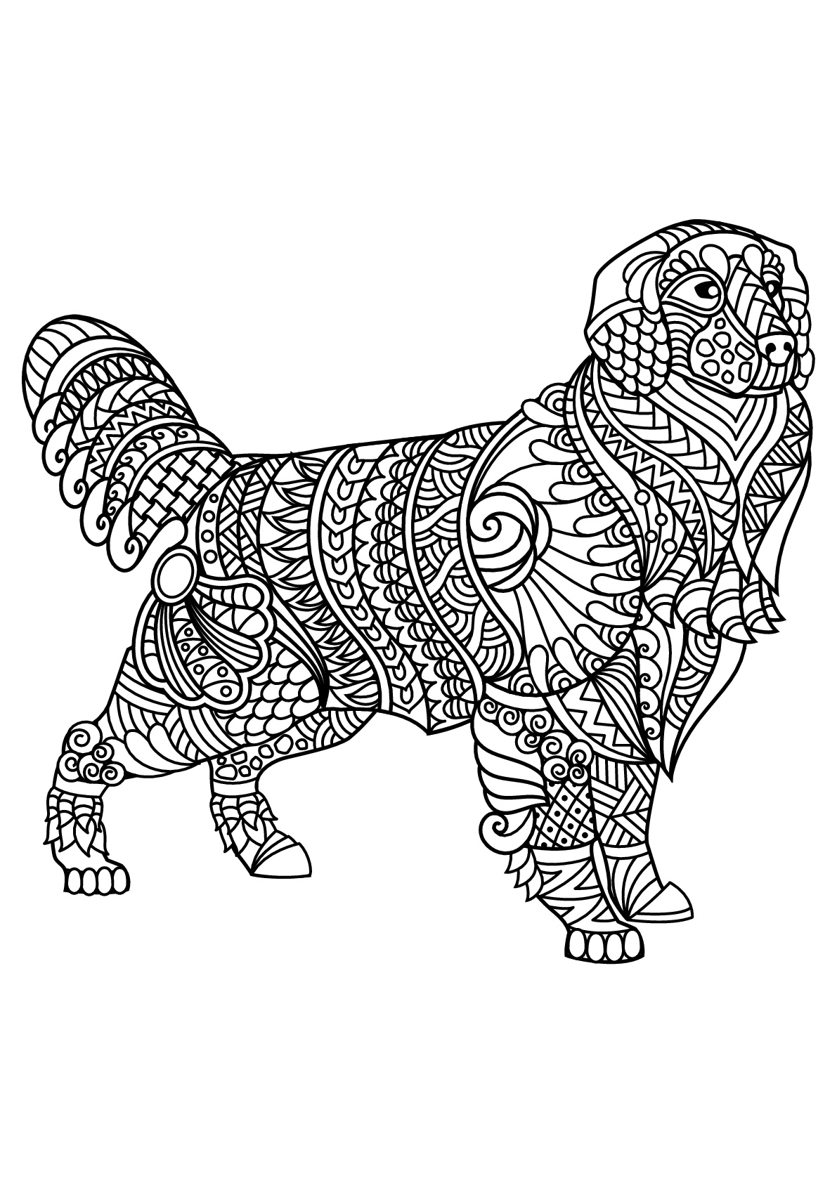 colouring pages of dog free book dog labrador dogs adult coloring pages pages dog colouring of