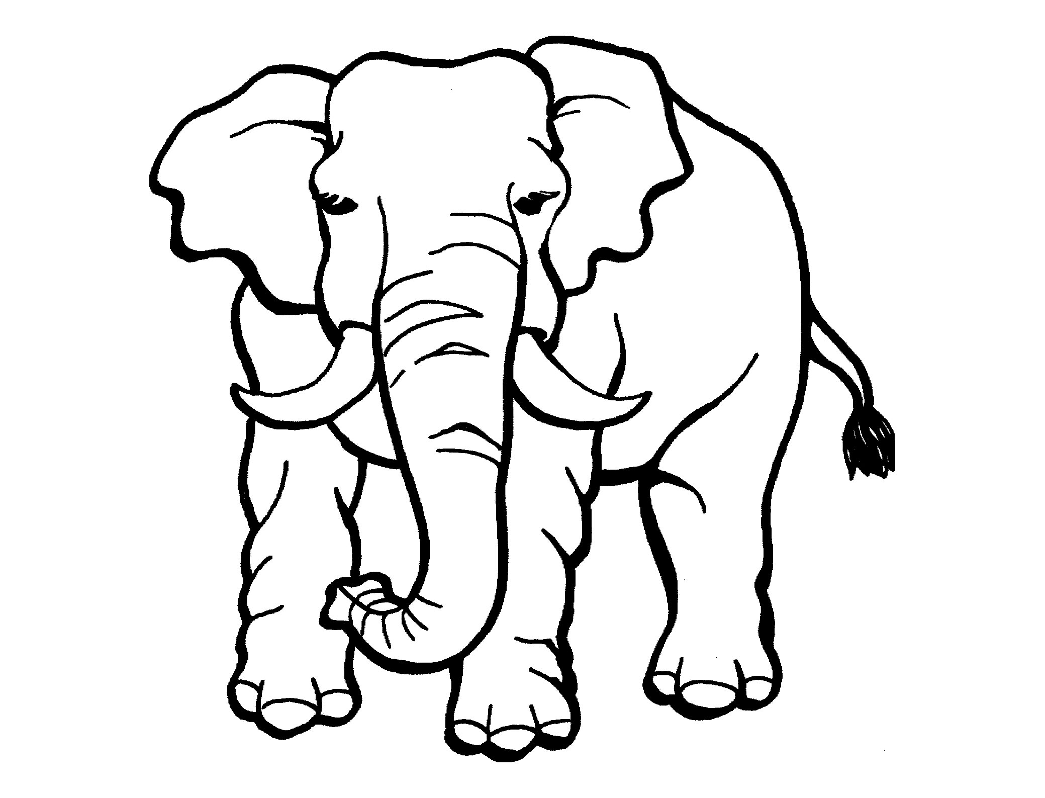 colouring picture of elephant 21 of the best ideas for baby elephant coloring page picture of colouring elephant
