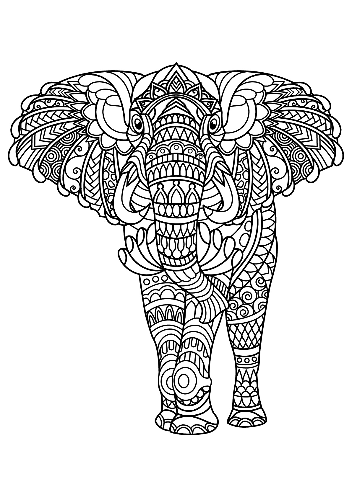 colouring picture of elephant elephants to color for children elephants kids coloring of picture elephant colouring
