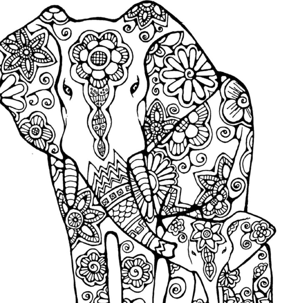 colouring pictures of elephant elephant drawing pages at getdrawings free download of pictures colouring elephant