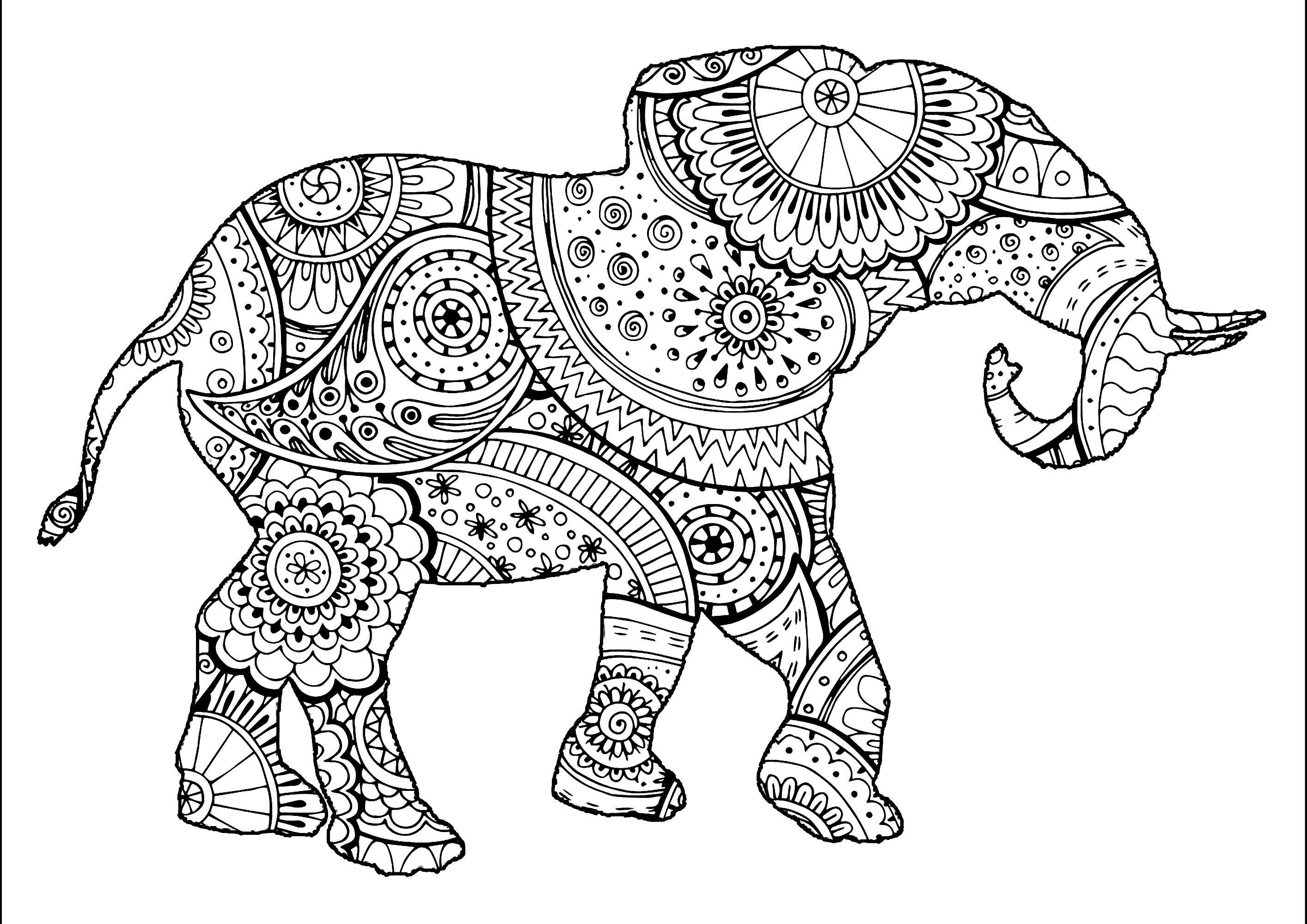 colouring pictures of elephant elephant shape with patterns elephants adult coloring pages of colouring elephant pictures