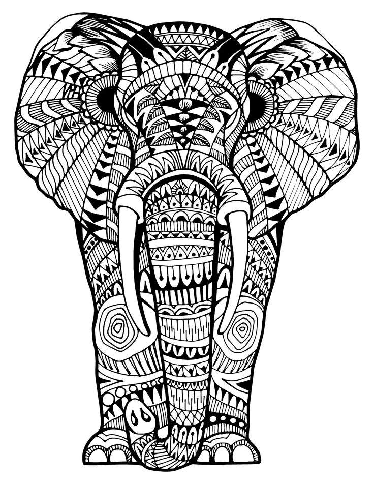 colouring pictures of elephant intricate elephant coloring pages at getcoloringscom of colouring elephant pictures
