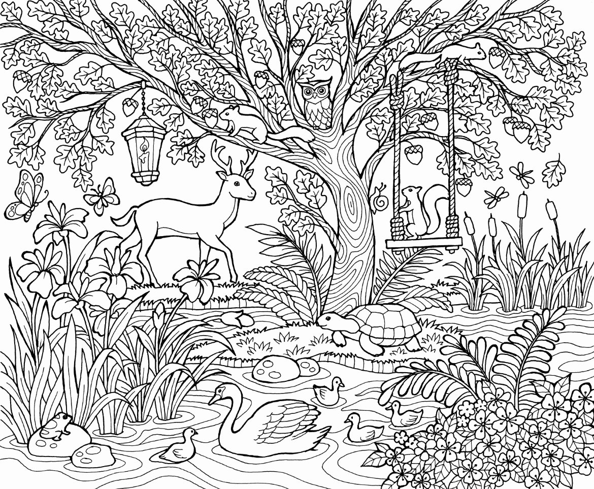 colouring pictures of nature free nature coloring pages duathlongijon coloring blog of colouring nature pictures