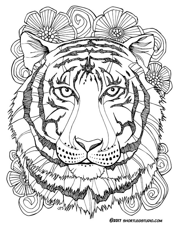 cool tiger coloring pages cool tiger coloring pages pages coloring cool tiger