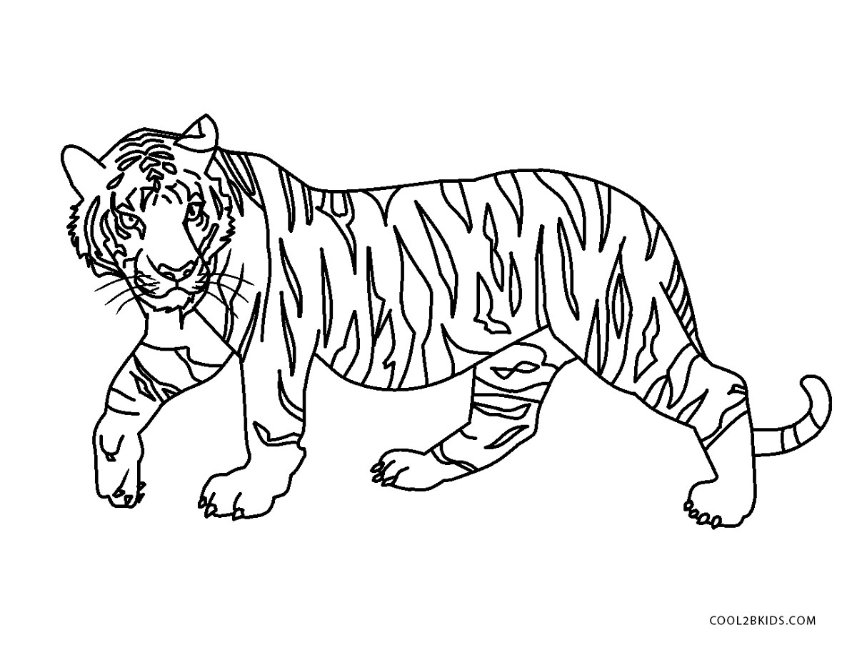cool tiger coloring pages free printable tiger coloring pages for kids coloring tiger pages cool
