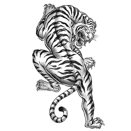 cool tiger coloring pages free printable tiger coloring pages for kids pages cool coloring tiger
