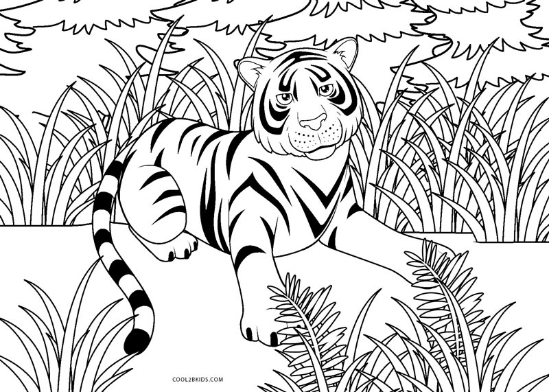 cool tiger coloring pages nice cute baby tiger coloring page unicorn coloring pages coloring cool tiger