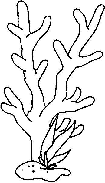 coral coloring pages coral reef drawing with color at getdrawings free download coral pages coloring