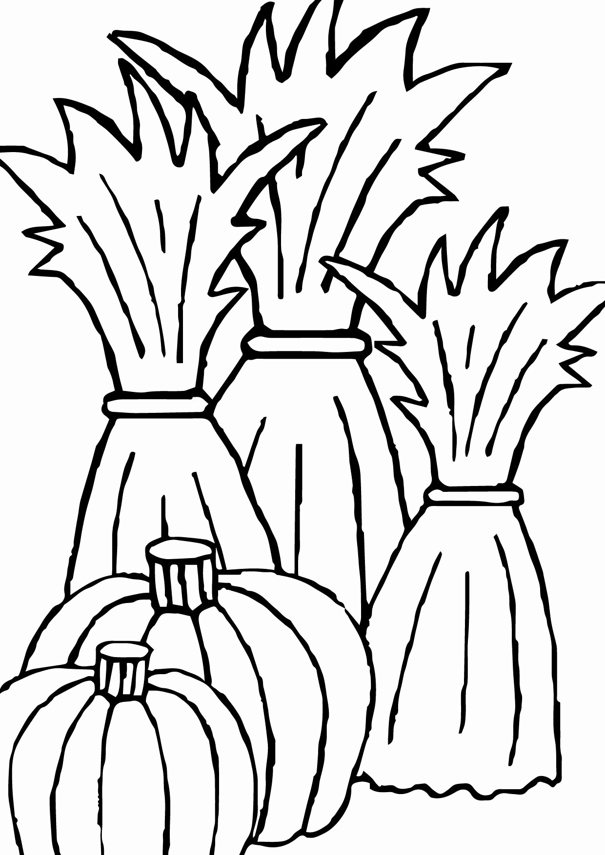 corn stalk coloring sheet corn plant drawing free download on clipartmag stalk corn coloring sheet