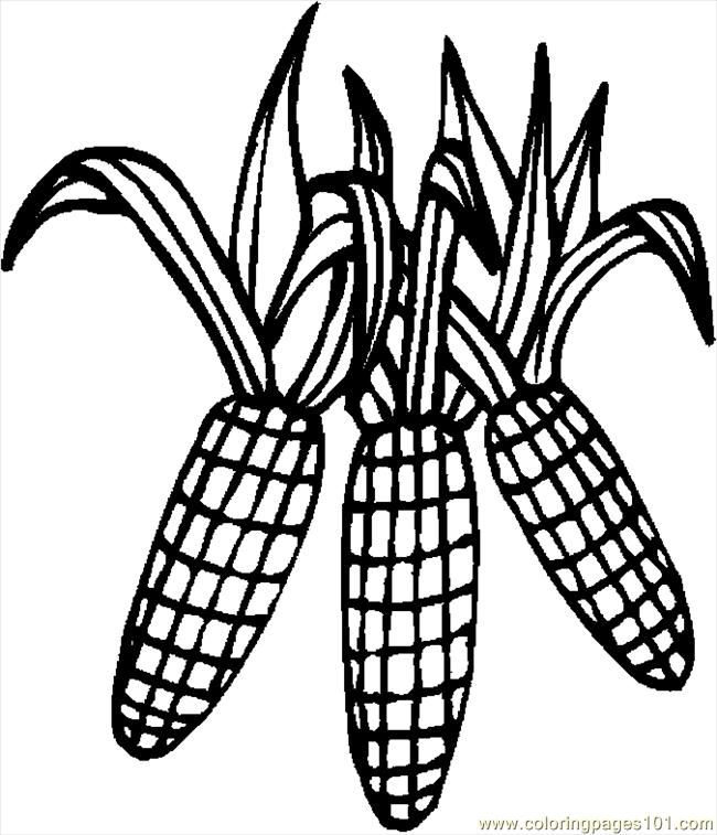 corn stalk coloring sheet corn stalk coloring page clipart free download on clipartmag corn stalk coloring sheet