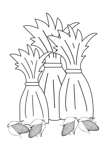 corn stalk coloring sheet use our free printable designs to keep kids of all ages corn stalk sheet coloring