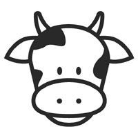 cow head coloring page cow face free kids coloring clipart best clipart coloring head cow page