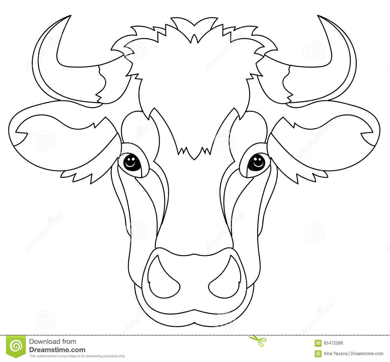 cow head coloring page decorated cow heads google search cow head how to coloring head cow page