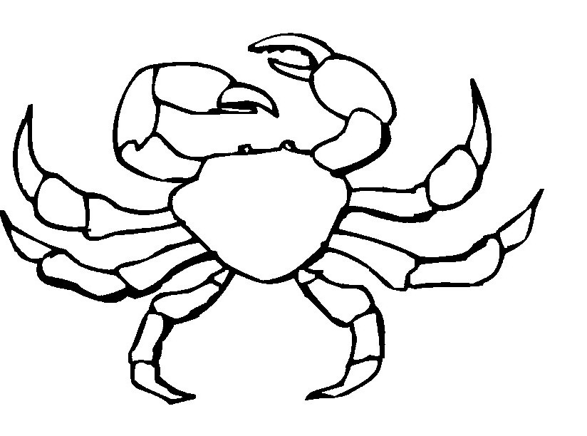 crab coloring pages free crab coloring pages kidsuki pages crab free coloring