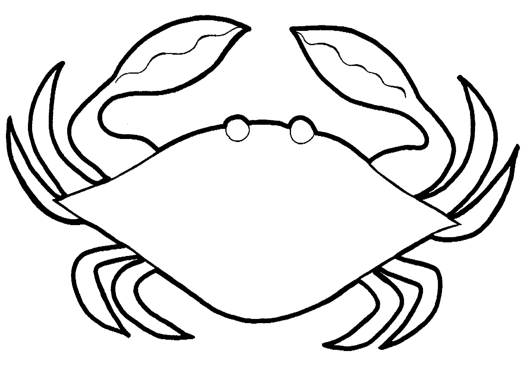 crab coloring pages free free printable hermit crab coloring pages for kids pages coloring free crab