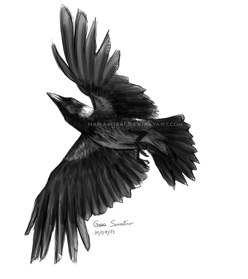 crow head drawing fantasy hooded assassin with greatsword stock photo head crow drawing