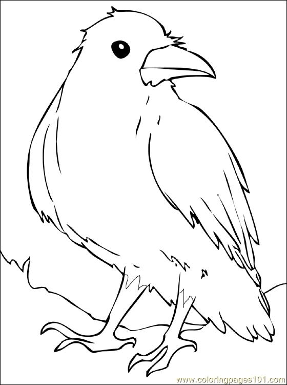 crow printable coloring pages 8 best images of free printable pictures of birds winter pages coloring printable crow