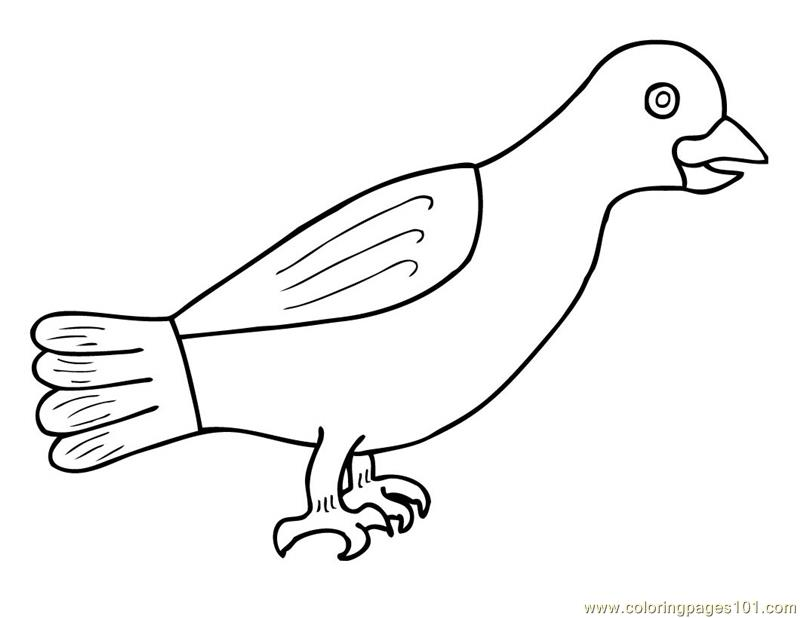 crow printable coloring pages crow coloring page animals town free crow color sheet crow pages printable coloring