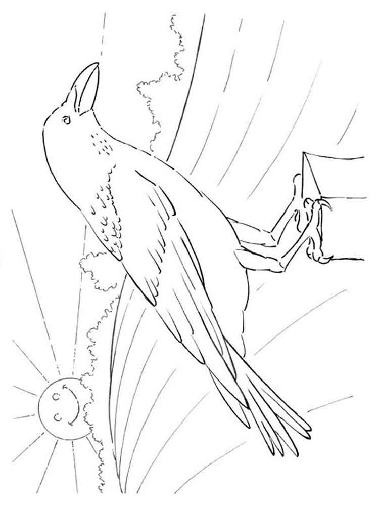 crow printable coloring pages crow coloring pages to download and print for free printable pages coloring crow