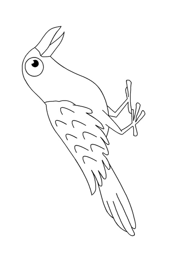 crow printable coloring pages crow looking coloring page free crow coloring pages printable crow coloring pages