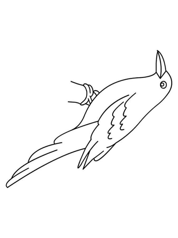 crow printable coloring pages crows coloring pages download and print crows coloring pages pages coloring crow printable