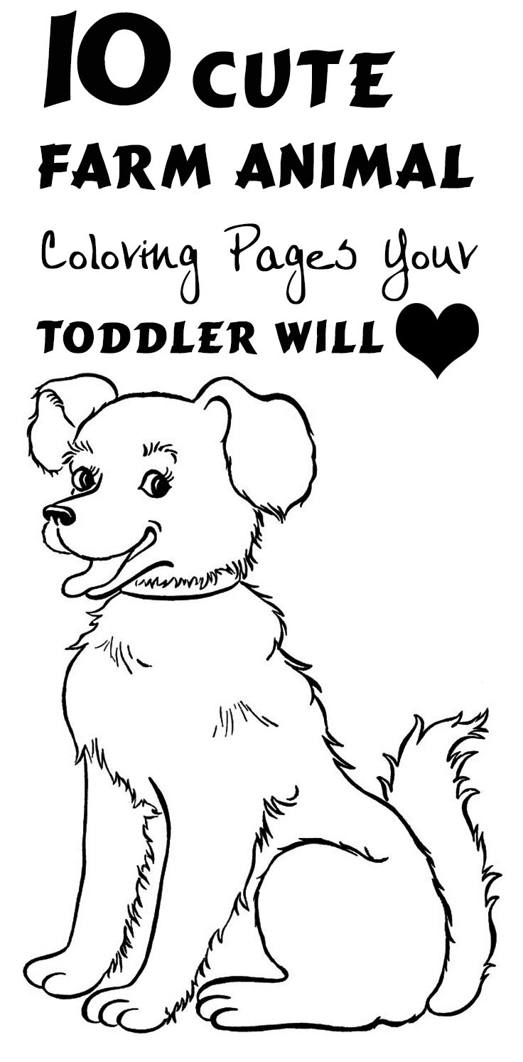 cute farm coloring pages baby coloring cute farmnimals pages 2020 with farm cute pages coloring