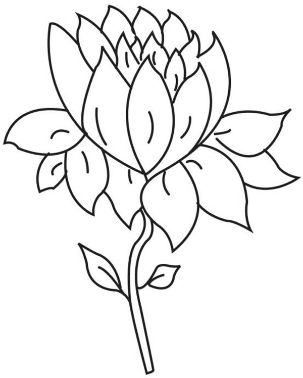 cute flower coloring pages simple flower coloring pages coloring home pages flower coloring cute